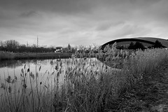 Rushes (John fae Fife) Tags: fujifilmx noiretblanc xe2 luxembourg bw lecoque nb urban monochrome rushes blackandwhite park building urbanlandscape coque