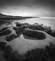 san diego : hospitals reef (William Dunigan) Tags: san diego hospitals reef la jolla southern california long exposure black white monochrome