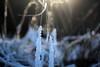 A little Bit Hope (Rolf-Schweizer) Tags: hope artphotography art appenzell artist appenzellerland auffrischen appenzellertourismus rolfschweizer rolfschweizerfotografie rolfschweizerphotography flickr fotografie farben fresh frost toggenburg thechurchofjesuschristoflatterdaysaints kirchejesuchristiderheiligenderletztentage keystone kunst bauernverband bauer schweiz svp switzerland stgallertagblatt swiss svizzera suisse sky schweizerischerbauernverband silence sunset svizra snow sun sonne schnee