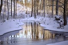 Winter Wonderland (FlorDeOro) Tags: nikon d90 nikkor 18105mm photography nature landscape river water trees reflection light snow winter januari glow colorful beautiful sweden mijarajc