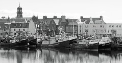 Stornoway fishing fleet in port. (Dave Russell (1.5 million views thanks)) Tags: outer hebrides island lewis harris stornoway town harbor harbour fish fishing fleet ship boat vessel transport work travel boats vessels ships home port pier outdoor blackandwhite monochrome mono black white sy 47 274 21 7 3 337 prevail rival autofocus