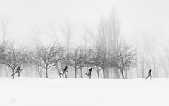 winter run (marianna_a.) Tags: p3140873 montreal winter snow bw blackandwhite blackwhitephotos monochrome monday mariannaarmata stack multiple boy running trees landscape fog