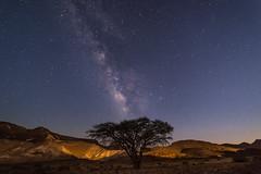 Nightfall (Alex Savenok) Tags: nightsky milkyway galaxy machtesh ramon israel desert negev nature astrophoto astroscaping stars