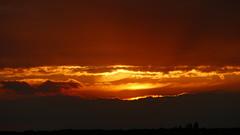 Coucher du soleil - 9 octobre 2016 - Rambouillet - Yvelines - Ile-de-France - France (vanaspati1) Tags: coucher du soleil sun sky couleurs colores orange jaune lumière light vanaspati1 nuages clouds sunset paysage 9 octobre 2016 rambouillet yvelines iledefrance france
