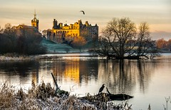 Birdlife. (AlbOst) Tags: linlithgow linlithgowpalace stmichaelschurch morninglight morningsun lochs cormorants herons birds linlithgowloch reflections frosty frostymorning birdlife maryqueenofscots bonnieprincecharlie coth historicscotland scotland history scottishlochs thepeel extraordinarilyimpressive