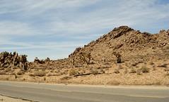Joe Dirt (On Location in Los Angeles) Tags: losangeles desert location mojave hollywood christopherwalken filming palmdale kidrock dennismiller fredward erikpersullivan adambeach davidspade jaimepressly brittanydaniel