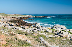 Turquoise Water (wenzday01) Tags: ocean park travel nature water southafrica nationalpark nikon atlantic cape nikkor capepoint atlanticocean capeofgoodhope westerncape capepeninsula tablemountainnationalpark d7000 nikond7000 vscofilm 18105mmf3556gedafsvrdx