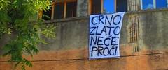 Dan akcije 11.7. - Zadar