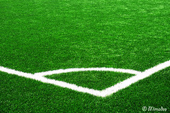 corner angle on soccer grass (Mimadeo) Tags: white game green texture field grass playground sport corner football play angle stadium background soccer border lawn ground line turf textured