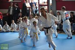 Judo-habay028