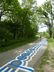 A-June2015 523 (PanAmPath.org) Tags: river for singing native earth x roadsworth june2015