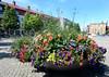 Vackra blommor på Kumla Torg 2015-07-12 (Torgil Jarnling) Tags: på blommor torg vackra kumla 20150712