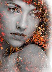 Face and autumn leaves (4ascal) Tags: autumn portrait bw color colour face leaves vertical closeup female composition studio felicia switzerland model nikon europe head zurich nikkor blend d800 blending picz 2015 tfp 4ascal