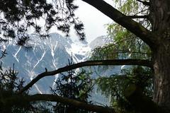 Bergen bij Innsbruck Explore 20150804 (Olga and Peter) Tags: mountains austria oostenrijk bergen uitzicht innsbrück vieuw fp1050066