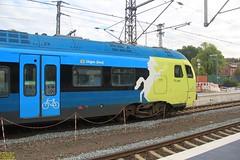 WestfalenBahn Stadler FLIRT #ET411 (94 80 1428 111-7 D-WFB) (busdude) Tags: bad benthiem badbenthiem ns nederlandse spoorwegen deutsche bahn nederlandsespoorwegen deutschebahn db ic 141 intercit