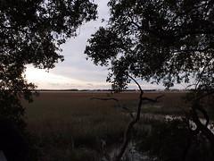 Marsh (BunnyHugger) Tags: charleston dorothybkearnspark letterboxing southcarolina wandoriver