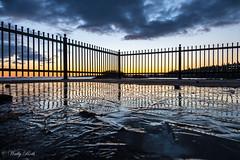 Frozen Sunrise (waledro) Tags: sunrise neckpointpark railing ice frozen