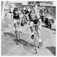 Raymond Poulidor and Jacques Anquetil. (Paris-Roubaix) Tags: jacques anquetil raymond poulidor tour de france vintage bicycle racing st raphael gitane mercier bp black white cycling photographs motorbike photographers