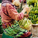 Woman Bundling Bananas, Mt. Lawu Indonesia