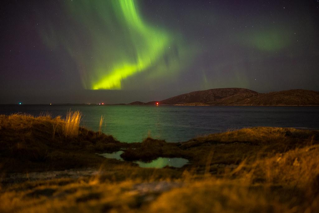 bodø escort norwegian pornstars