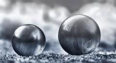 like pearls (tan.ja1212) Tags: seifenblase soapbubble winter eis ice schnee snow gefroren frozen filterbearbeitung eisblumen pearl perlen