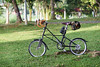 20170106-DSC02623 (jenkwang) Tags: pentaxtakumar13535135mmf35 alex moulton tsr 10sp bike mini velo