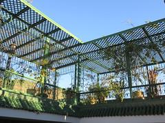 Roof terrace, Riad La Maison Verte, Fez, Morocco (Paul McClure DC) Tags: fez morocco fès almaghrib dec2016 medina feselbali maroc historic architecture