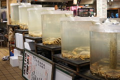 Crab Tanks (Let Ideas Compete) Tags: crab crabs tanks fishmarket pikeplacemarket market publicmarket jacksfishchipspot