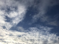 January 14, 2017 at 01:46PM (Mr T UK) Tags: ios photos cloud clouds sky outdoor blue white grey dark light sun sunshine cloudy clear overcast iphoneography mobile 365days 365day project365 cloud365