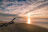 Il tramonto di Marina di Vecchiano 1 (Nico Angeli) Tags: vecchiano mare paesaggi tramonti