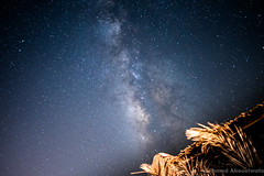 chasing the milky (ahmedabouelwafa) Tags: nature stars milky way milkyway night astrophotography sinai egypt d750 nikon 24mm lovely beautiful