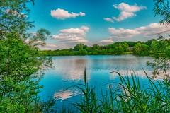 Idyllic Lake (Delbrücker) Tags: lake nature see outdoor natur teich sonnig landschaft idyllic idylle nikkor2470 nikond610