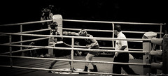 Dodging that punch (gunman47) Tags: b sea bw white black monochrome sepia asian thailand mono 1 hall singapore asia expo south w games anh east vietnam le wait dodge punch boxing defensive result thi umpire 2015 ngoc dodging raksat chuthamat
