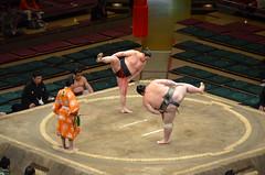 sumo (Herv Clairet) Tags: japan sumo japon sumos sumotori