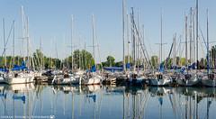 Sailboats at Ashbridges Bay. (andreasheinrich) Tags: summer toronto ontario canada evening nikon warm july sunny sailboats lakeontario ashbridgesbay d7000