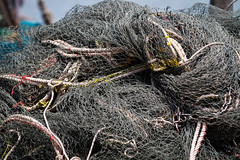 Auswahl-5934 (wolfgangp_vienna) Tags: thailand island asia asien harbour insel ko seafood hafen trat kut kood kokood kokut kohkut aoyai