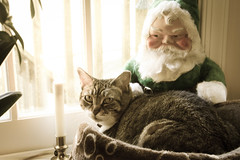 Boots Waiting for Santa (t conway) Tags: