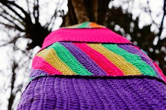 Macro L'abre en habit de laine (camilleromane1) Tags: macro arbre tree tronc sony sonyalpha68 couleursvives couleurs color cold whool laine