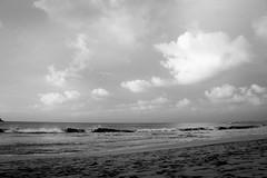 Copy of Kauai b&w62-2 (chiarina2016) Tags: kauai hawaii island beach monotone blackandwhite chiarinaloggia stormyseas waves trails hiking surf hanalei hanaleibeach sunset