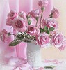Images of a different flowers (PhotographyPLUS) Tags: articles footage freephoto graphics illustrations images photos pictures stockimage stockphotograph stockphotos
