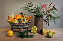 Gourds Wisdom (Esther Spektor - Thanks for 12+millions views..) Tags: stilllife naturemorte bodegon naturezamorta stilleben naturamorta composition arrangement creativephotography artisticphoto autumn tabletop bouquet pine gourd pumpkin branch collection stand basket ceramics wicker metal shape pottery pattern availablelight green yellow orange red brown rust estherspektor canon