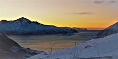 Depart (little_frank) Tags: rekvik kvaløya troms norway fjord nature fantastic horizon light arctic wonder wonderful beauty sea ocean skyline edge snow snowy winter wintry shore gleam norvegia norwegen noruega noorwegen ノルウェー norvège norge 노르웨이 挪威 panorama landscape view shades scandinavia skandinavien escandinavia escandinávia scandinavië scandinavie 北欧 斯堪的纳维亚 斯堪的納維亞 스칸디나비아