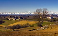 Monferrato (Fil.ippo) Tags: montferrat monferrato piemonte piedmont italy wine vino landscape alps alpi panorama jaunary filippo filippobianchi d610 casalemonferrato