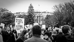 2017.01.21 Women's March Washington, DC USA 2 00148