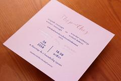 IMG_4657 (pockethifi) Tags: lingling ring card wedding