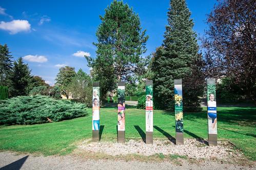 Albin-Reiter-Park
