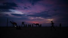 Goa Beach (sandip de) Tags: sunset sea beach landscape goa camel silhoutte sandip sandipde sandipdecom