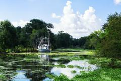 Bayou Petit Caillou (mcandrus) Tags: landscape louisiana bayou petit caillou chauvin