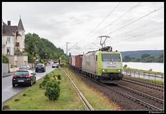 CT 185 549-3 - Linz am Rhein (Spoorpunt.nl) Tags: juni linz am ct container 13 rhein rijn 185 2015 rechter trien baureihe 5493 rheinstrecke dattenberg captrein