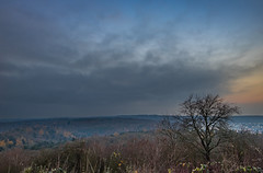 Monte Scherbelino III (thomasmayer382) Tags: stuttgart 0711 sunrise sonnenaufgang morning sonyalpha sony sigma24mm montescherbelino landscape landschaft